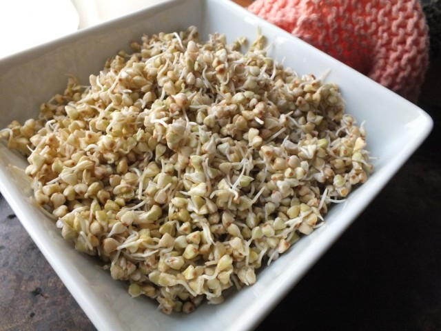 Buckwheat Cereal from thefitchen.com_2